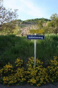 Panoramaweg in Weißenkirchen