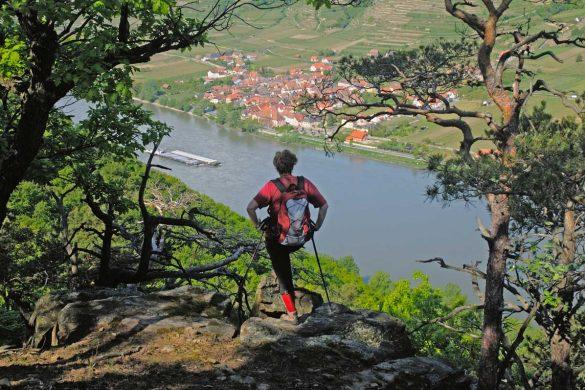 Wandern-Welterbesteig-Wachau-Donau-NOE