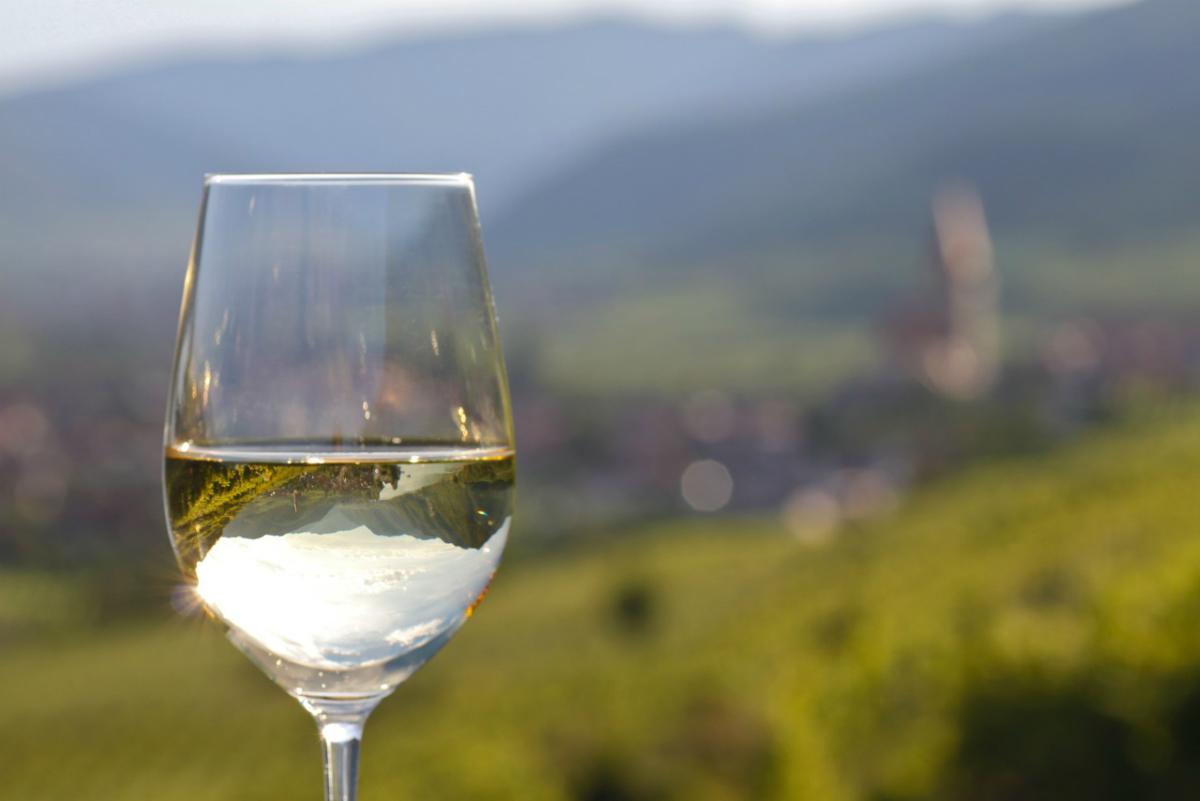 Ein Glas Wein in der Natur genießen