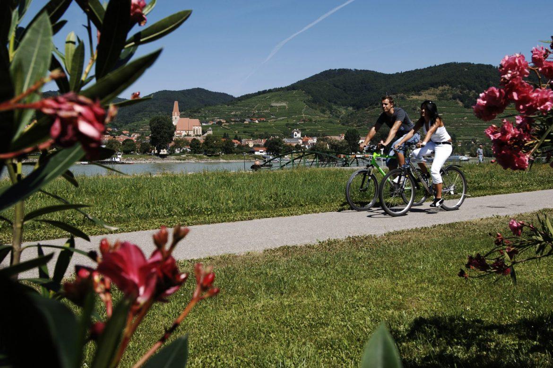 Radfahren in der Wachau