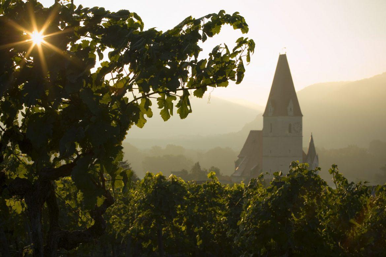 Sicht auf Weißenkirchen in der Wachau