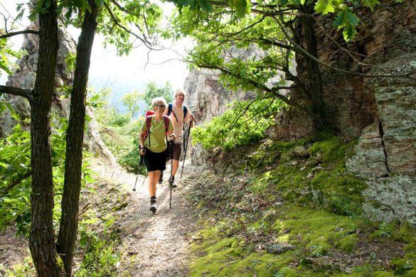 wandern-gesundheit